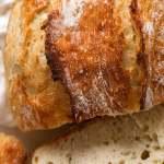 World S Easiest Yeast Bread Recipe Artisan No Knead Crusty Bread Recipetin Eats