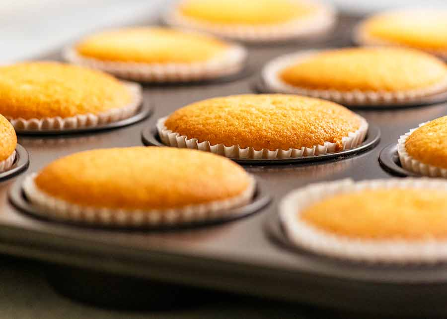 Vanilla Cupcakes in muffin tin, fresh out of the oven