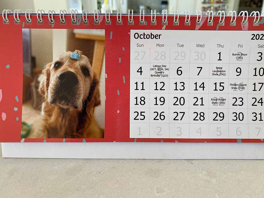 Dozer October calendar