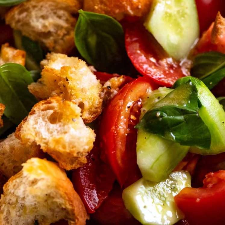 Close up photo of Panzanella Italian tomato and bread salad
