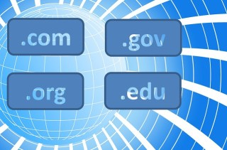 A world schematized with 4 domain extensions and text is also present to show  the .com, the .org, the .gov, the .edu