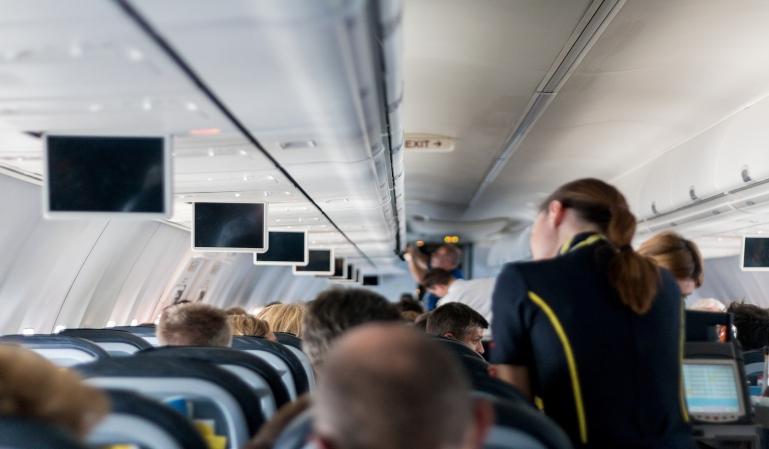 ¿Qué alimentos se pueden llevar en el avión?