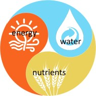 A 3-sided version of a yin-yang symbol includes energy, water, and nutrients in an infinite circling of each other.