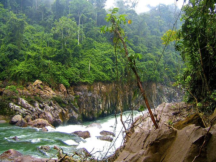 Tena River