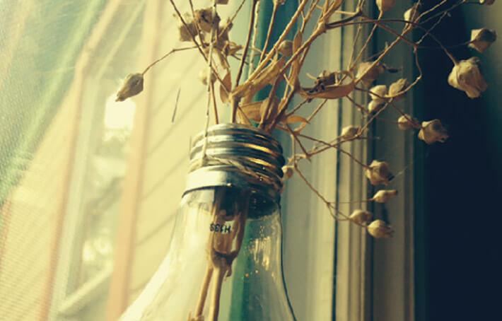 DIY - Hanging Lightbulb Planter