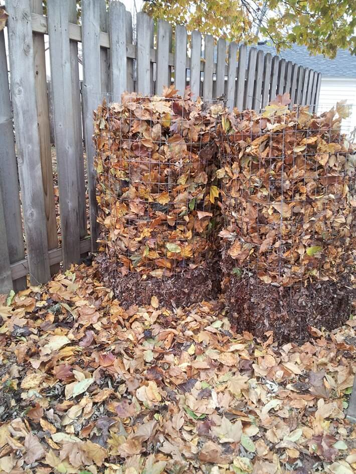 Making Leaf Mold Compost