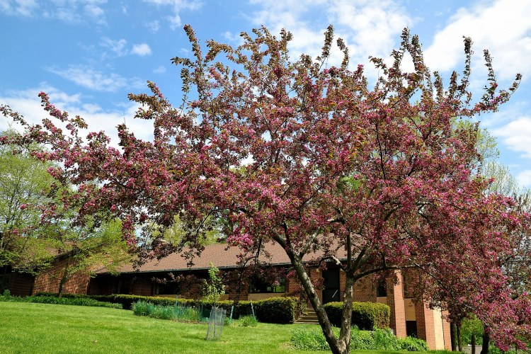 A New RIC Community: Reformation Lutheran Church (Brookfield, WI)