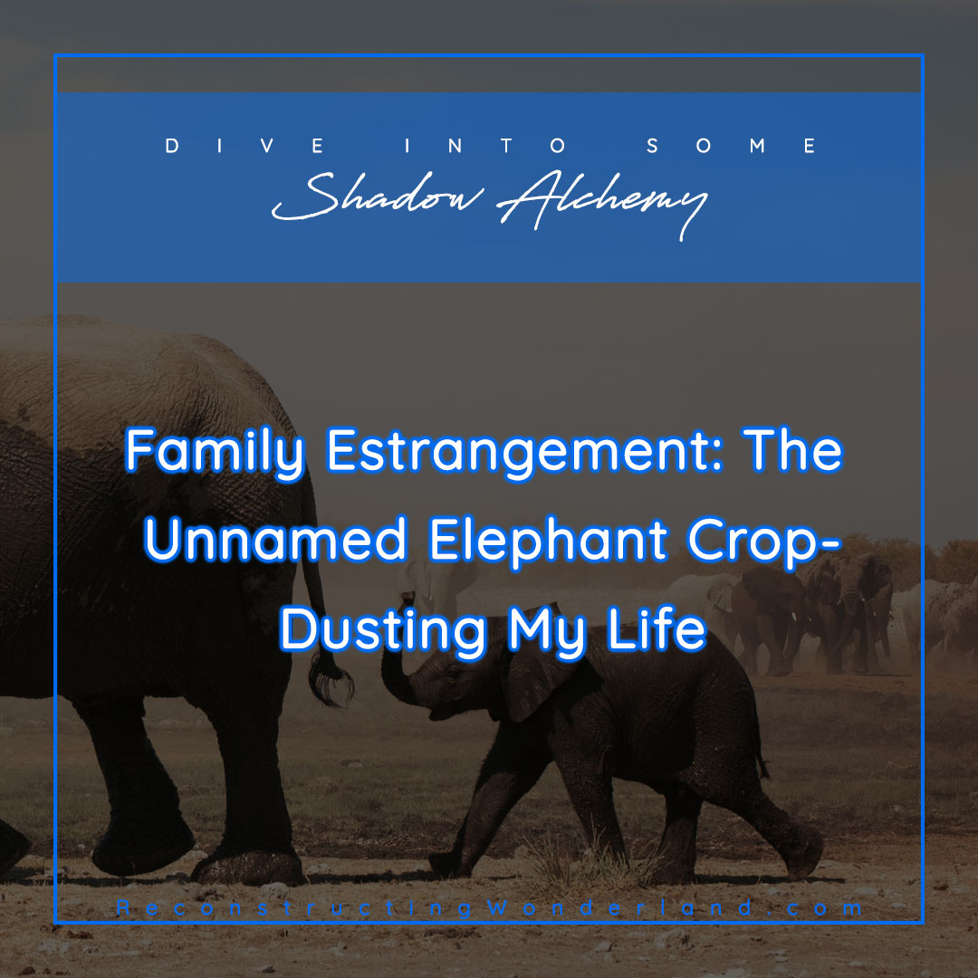 family estrangement