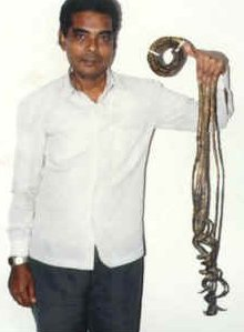 Shridhar Chillal (India)