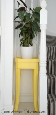 yellow table with plant