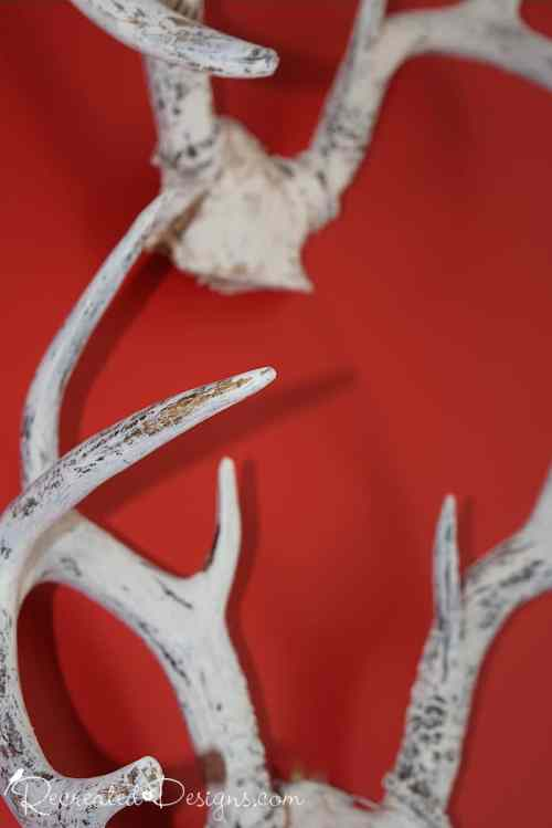 Antlers painted with Fusion Mineral Paint in Limestone
