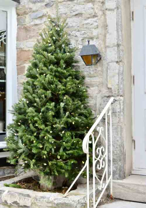 Christmas tree Old Quebec City