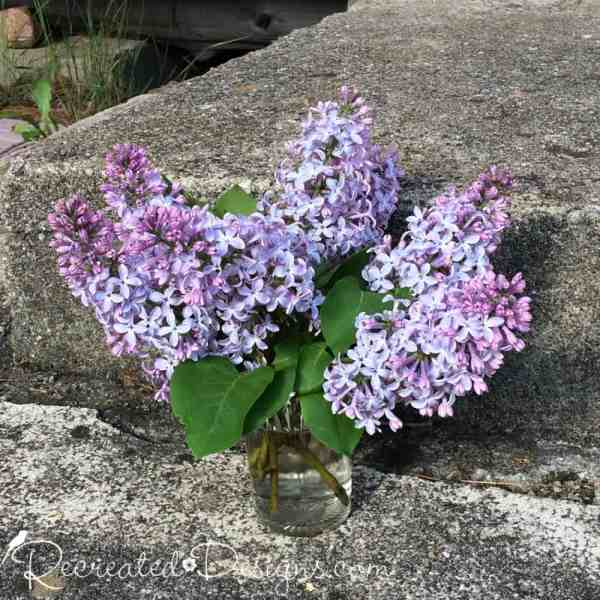 lilacs on a stone step