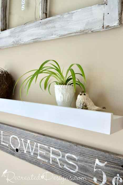 a beautiful green plant on a ledge as part of a farmhouse type decor display
