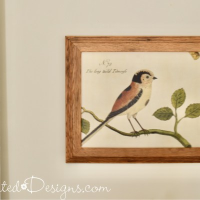 bird art in an old oak frame