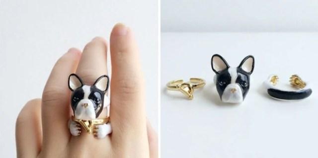 perro bull dog frances anillo
