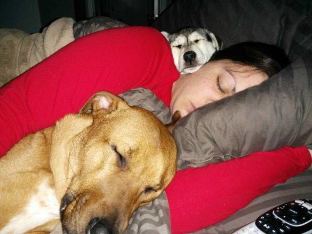 mujer dormida con sus 2 perros