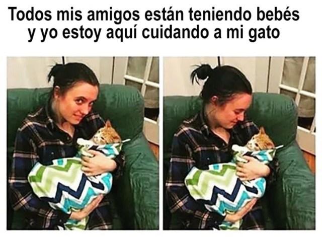 mujer hacia a un gatito arropado cual bebé