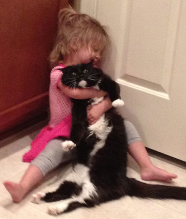 Niña juega con gatito enojado