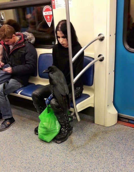 chica con su cuervo negro en el metro