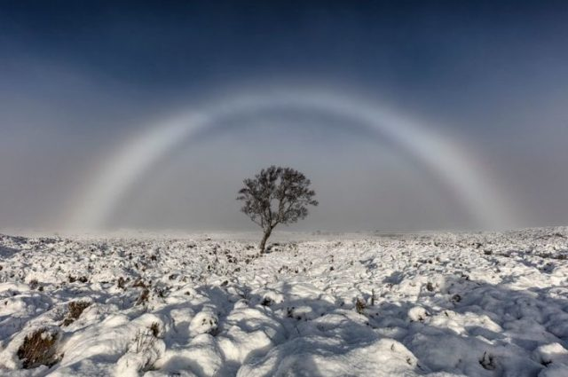 arcoiris blanco