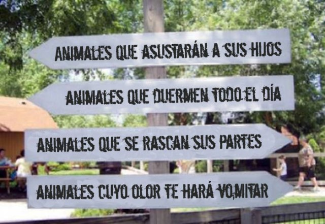 animales letrero dirección