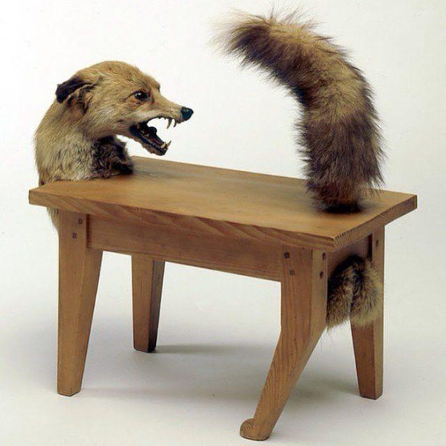 Mesa de zorro
