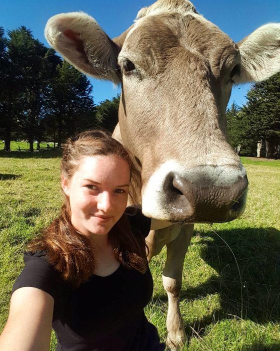 Selfie chavala y su vaca
