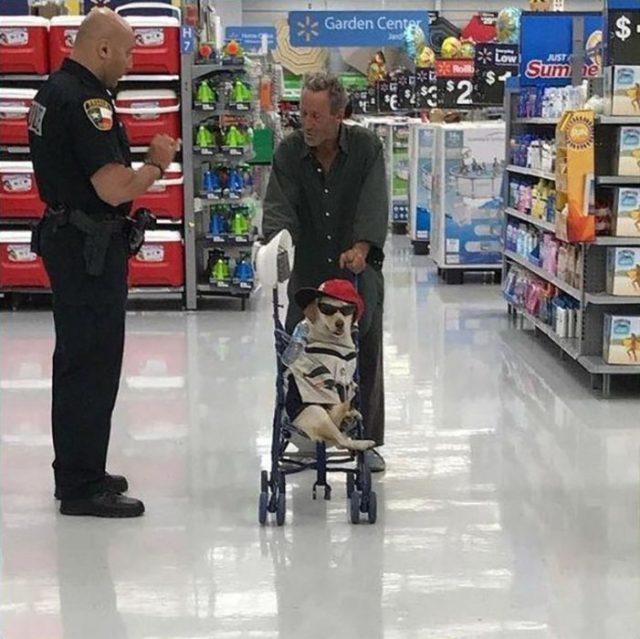 hombre paseando en el súper con su mascota en una carriola