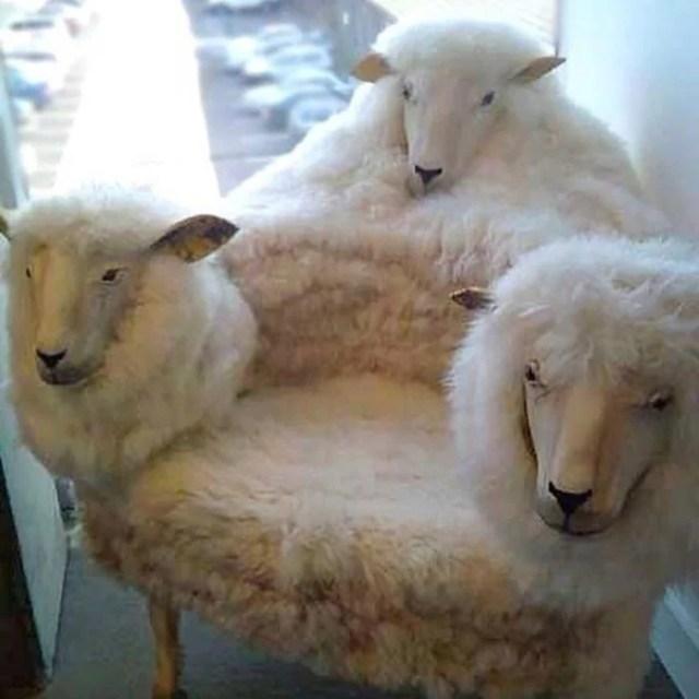 La silla del terror