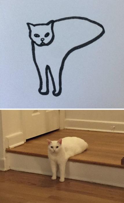Dibujos realistas gatito - en las escaleras