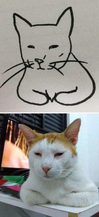 Dibujos realistas gatito - descansando