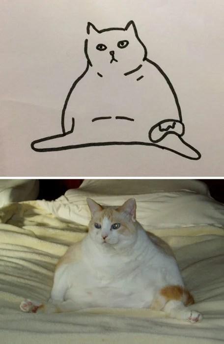 Dibujos realistas gatito - sentado