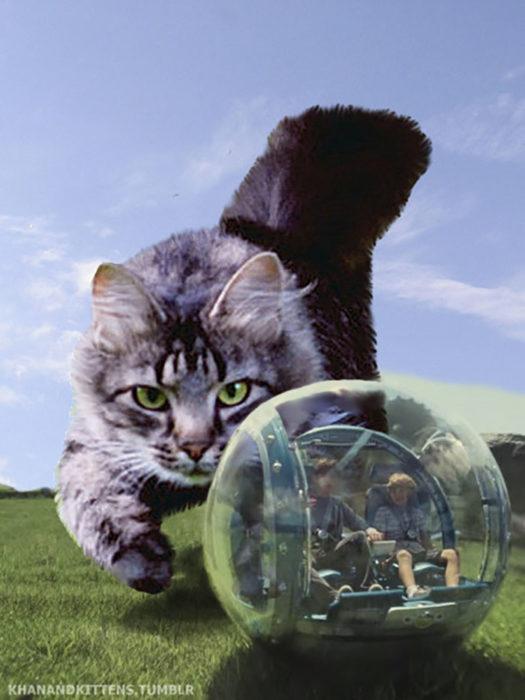 gato gigante jurassic world