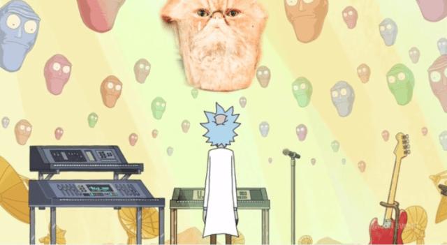 Rick y Morty gato
