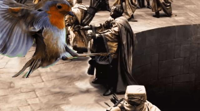 esparta pájaro