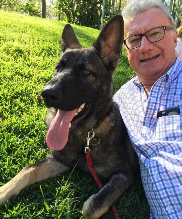 Perro australiano policía con el regidor