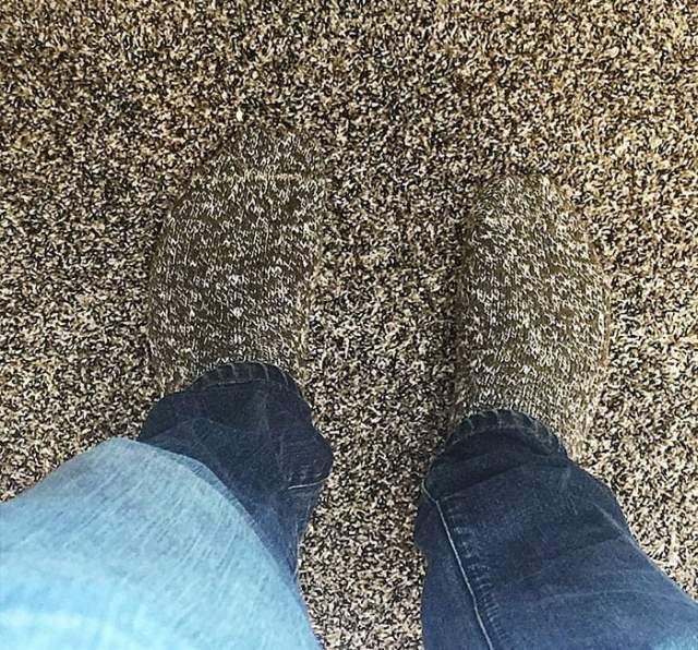 Calcetines se pierden con la alfombra
