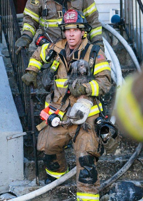 bombero rescatista
