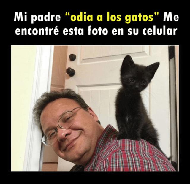 Señor se jala selfie con gatito
