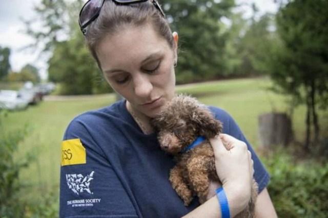 Cuidadora rescata a perrita RecreoViral.com
