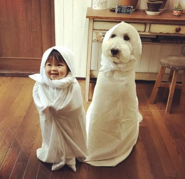 Listas para Halloween