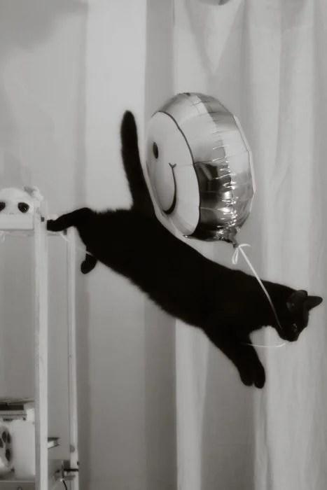 Me llevo éste globo