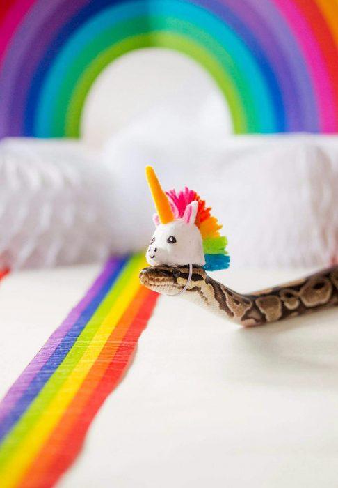 víbora cabeza unicornio