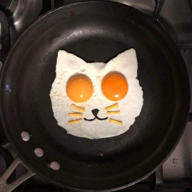 Me semeja que vi un lindo gatito