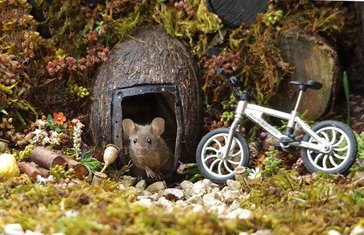 villa de ratoncitos fotos