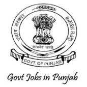 619 DHFW Punjab Jobs | PB Health Medical Officer Recruitment 2016   www.pbhealth.gov.in