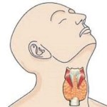 9 Hyperthyroidism Symptoms You Must Know About