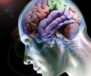 Terapias de neuroprocesamiento