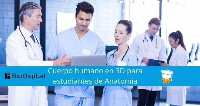 Cuerpo humano en 3D para estudiantes de Anatomía